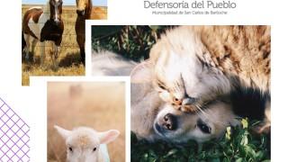 [29 de abril] Día del Animal y del Cuidado Responsable de Animales de Compañía