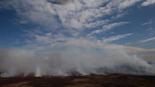 Amicus Curiae | ADPRA va a la Corte por los incendios en el Delta del Paraná