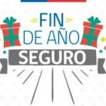 FIN-DE-AÑO-SEGURO_500x322-300x193