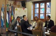Presentacio del Informe Anual 2017 en el Consejo Municipal