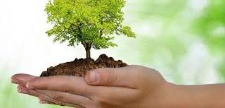 """""""Celebramos el día mundial del medio ambiente"""""""